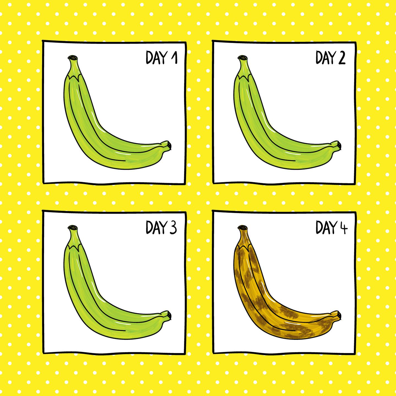 johannakerschensteiner_comics_banana